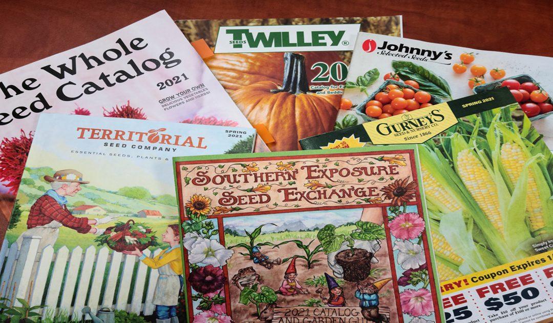 Shop carefully for 2021 garden seeds